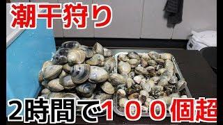 千葉県某所で潮干狩りをしてきました めちゃめちゃ捕れました 食べまし...