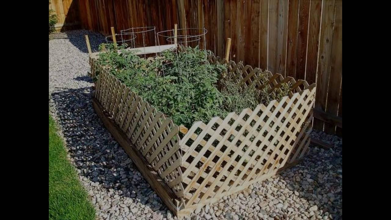 Diy Tomato Cages Hacks Fast Easy Ideas Ez Garden Tomatoes Tips