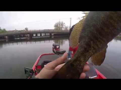 Annual Gopro Bass Fishing At Lake Memphremagog