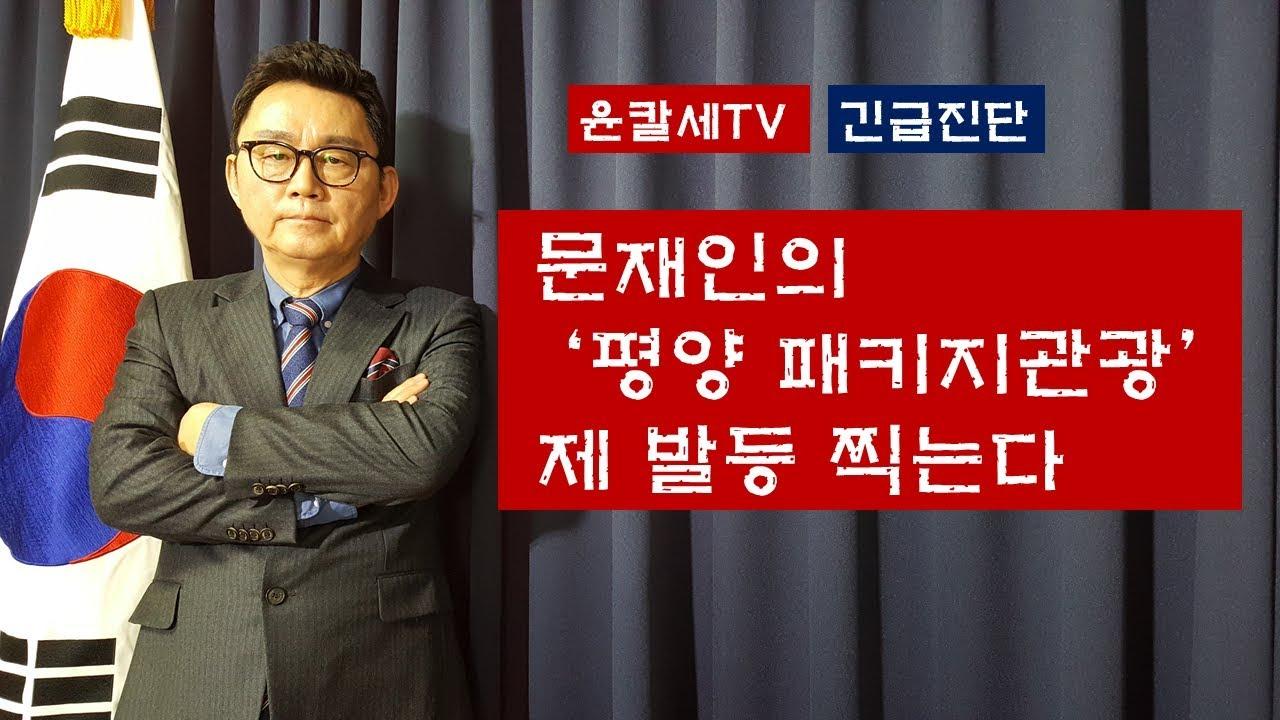 (긴급진단) 문재인의 '평양 패캐지관광' 제 발등 찍는다 윤칼세TV 칼럼(2018.09.18)