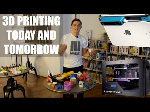 3D Printing Today and Tomorrow - the World's largest 3D store - Occipital Structure, Makerbot etc.