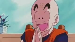 Goku e Gohan quebra tudo dentro de casa
