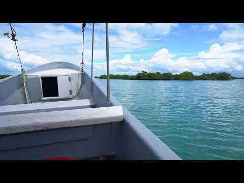 Boat Ride - Frenchman Cayes - Port Honduras Marine Reserve - PHMR - Toledo - Belize