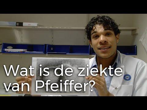 Wat is de ziekte van Pfeiffer? | Vragen van kinderen | Het Klokhuis