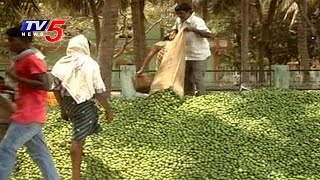 Lemon Farming Yielding Profits For Farmers In Tenali | Guntur | Annapurna | TV5 News