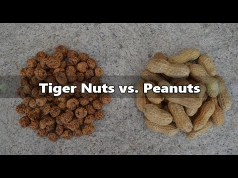 Why Do Tiger Nuts Beat Peanuts?: Culinary Questions with Kimberly