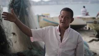 Baixar A Musicalidade da Capoeira, por Mestre Boca Rica