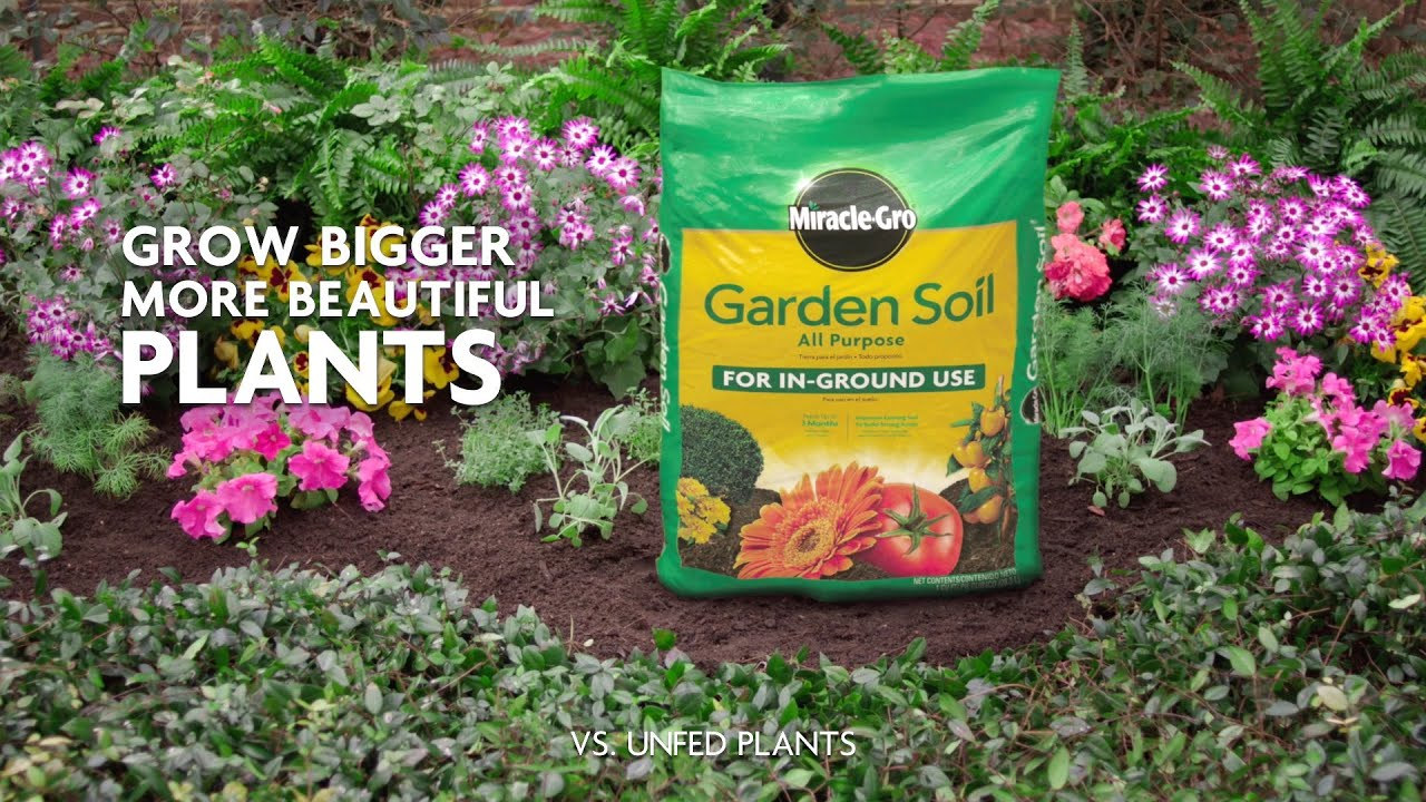 How To Use Miracle Gro All Purpose Garden Soil For In Ground Gardening