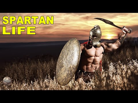 What Life Was Really Like for the Average Spartan