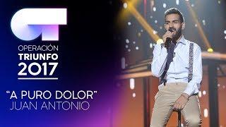 Скачать A Puro Dolor Juan Antonio Gala 3 OT 2017