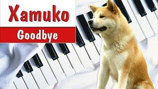 Мелодия из фильма Хатико: Самый верный друг на фортепиано — Goodbye (Hachi: A Dog's Tale piano)