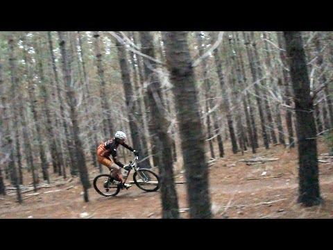 Cross Country Cruise - Mountain Biking in Bendigo Australia