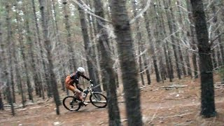 Cross Country Cruise - Mountain Biking in Bendigo Australia