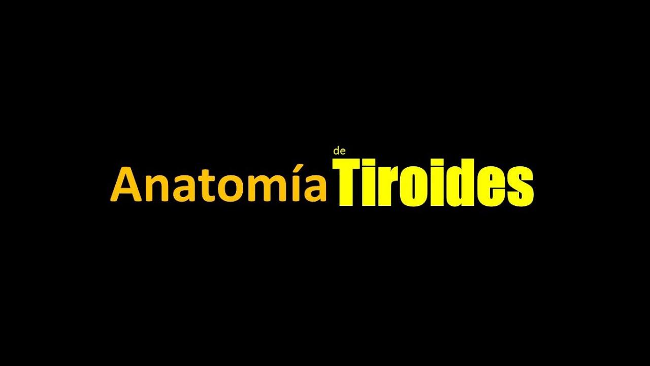 SERIE GLÁNDULA TIROIDES - Anatomía de Tiroides - YouTube