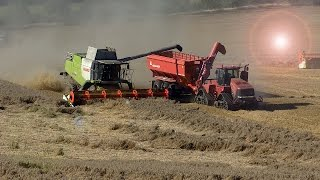 XXL BIG HARVEST! 4x Claas Lexion 1x New Holland 1x Case & Case IH Quadtrac 600