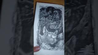 Обзор на книгу Коты воители Голоса в ночи.