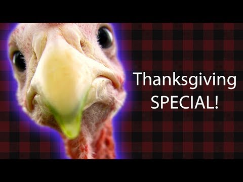 2017 THANKSGIVING DAY SPECIAL!!!