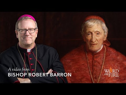 Bishop Barron on Pope Francis, Tradition, and John Henry Newman
