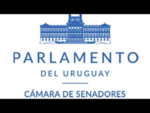 Sesión de la Cámara de Senadores | 04/06/2020 | República Oriental del Uruguay