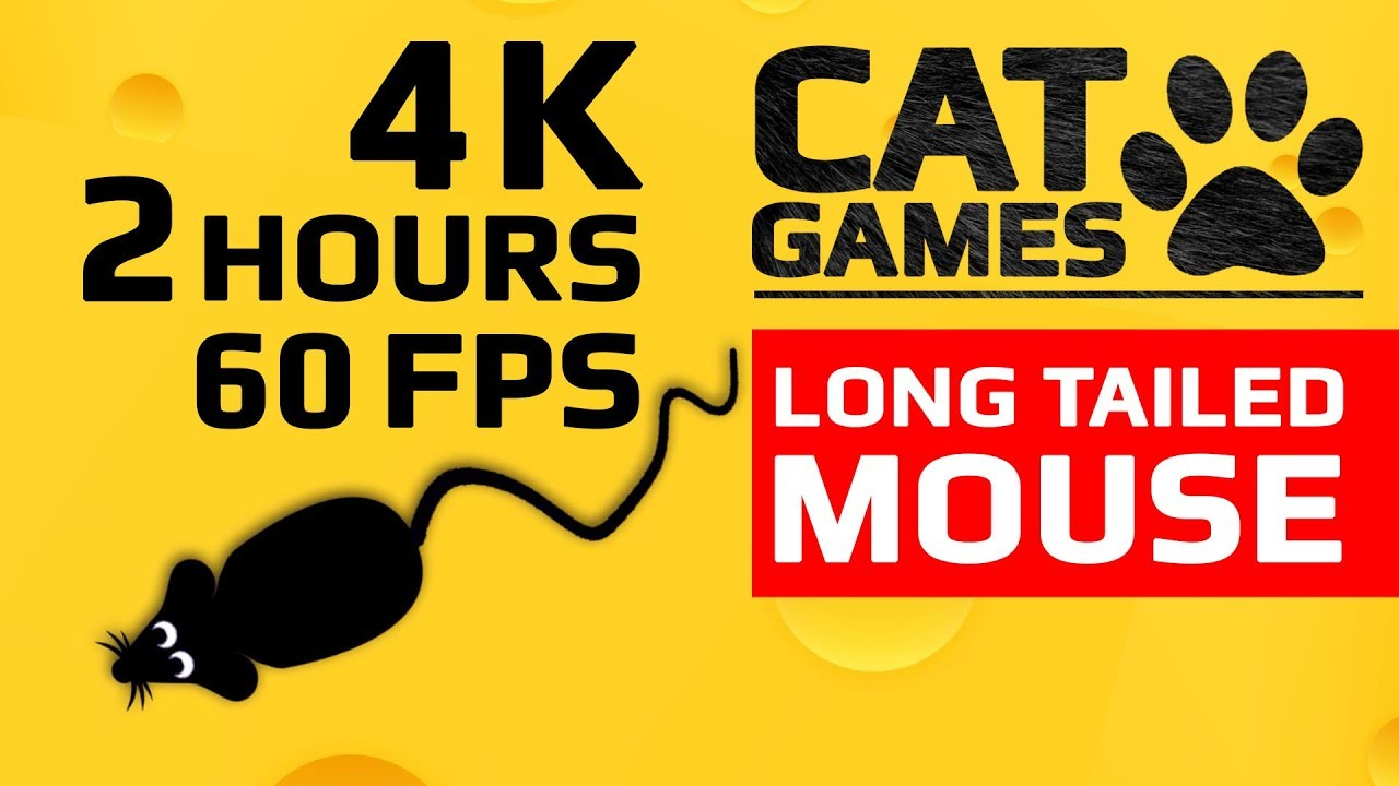 CAT GAMES – 🐭 LONG TAILED MOUSE (ENTERTAINMENT VIDEO FOR CATS TO WATCH) 4K 60FPS 2 HOURS