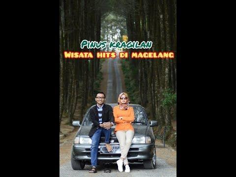 Hutan Pinus Kragilan - Wisata Hits Di Magelang