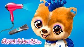 Fun Cute Animal Pet Care Game Animal Hair Salon