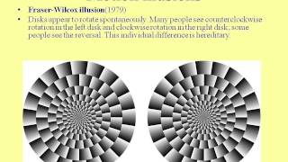 Fun with Visual Illusions - Professor William Ayliffe thumbnail