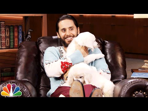 Pup Quiz with Jared Leto