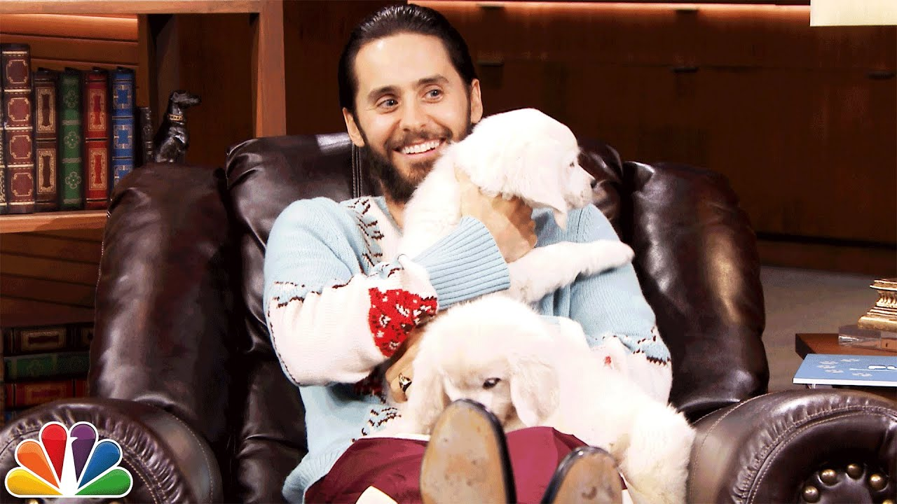 Pup Quiz With Jared Leto Youtube