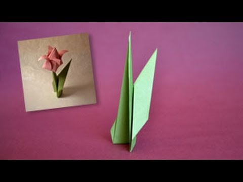 Origami Lily Instructions. Learn How to Make One | 360x480