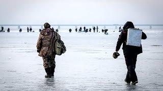 40 рыбаков дрейфуют в открытый океан на льдине