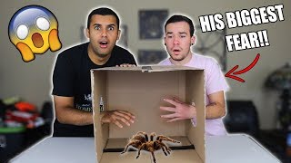 INSANE WHAT'S IN THE BOX CHALLENGE!!! MOUSE TRAPS / TARANTULA  *INSANELY DANGEROUS*