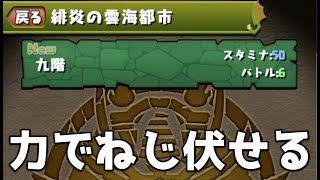 【パズドラ】雲海駆け込み9,10F