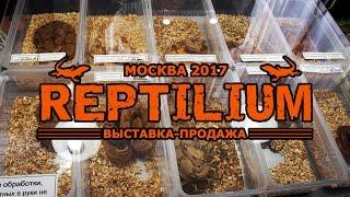 Рептилиум 2017 (REPTILIUM) Выставка-продажа экзотических животных