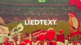 Download Video SÜDKURVE MÜNCHEN SIND WIR - SONGTEXT MP3 3GP MP4
