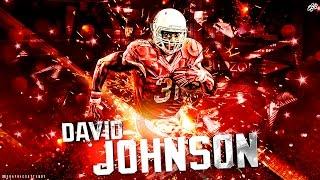 david johnson ultimate career highlights    mvp    nfl mix