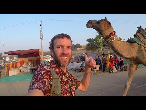 INDIA IS MIND-BLOWING! The Amazing Pushkar Camel Fair
