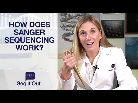 How does Sanger Sequencing Work? – Seq It Out #1