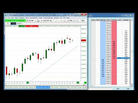 Trading Techniques in the Emini S&P Using the InfinityAT™ Trading Ladder