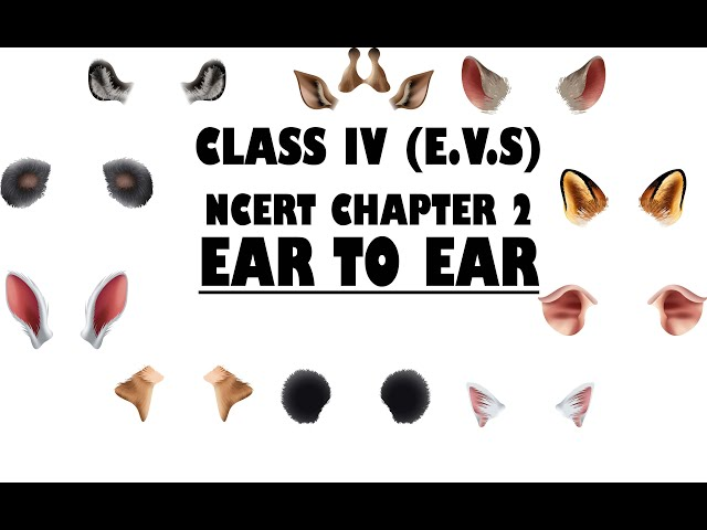 Class 4th Ear to Ear Chapter 2 EVS | S2S Classes