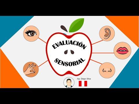 Introducción A La Evaluación Sensorial De Alimentos Eqs
