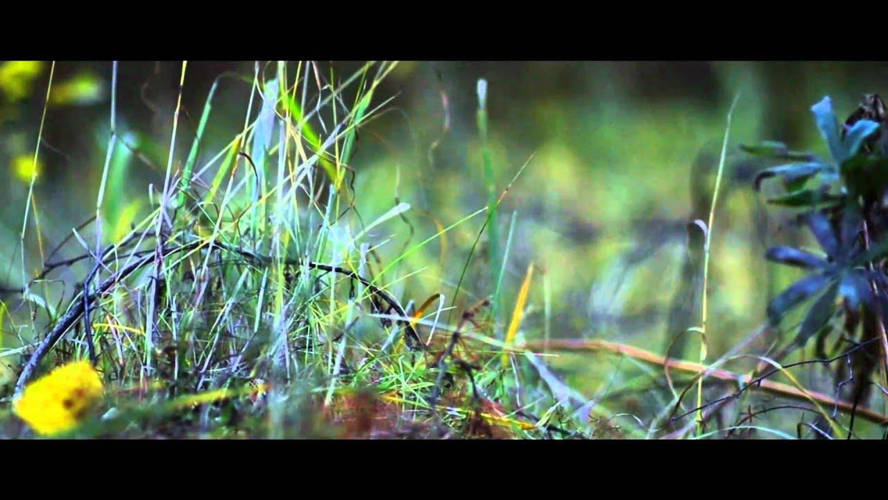 Nikon D3100 - cinematic video test, Full HD