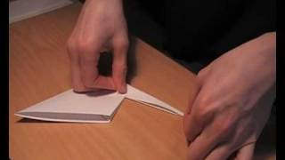 Origami crane , Prison Break crane.