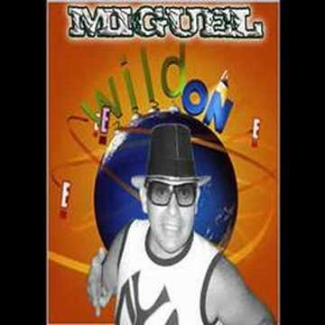 book  3d de miguel