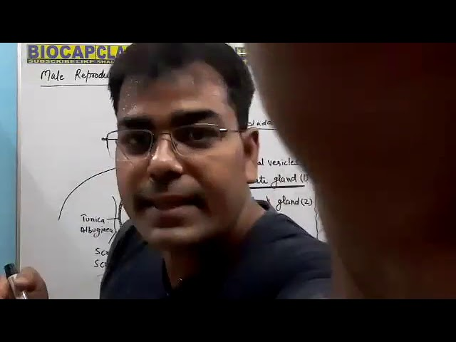 Class 12 - Zoom Meeting 4 - Human Reproduction - 4 (14 August 2020)
