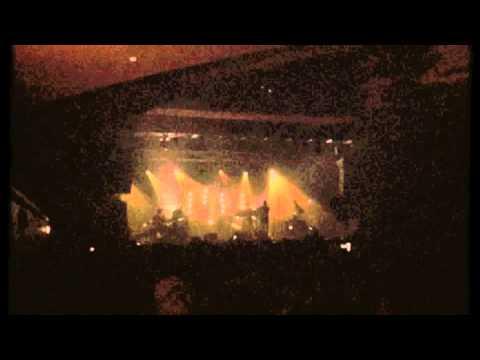 Bonobo Live Band - Flutter
