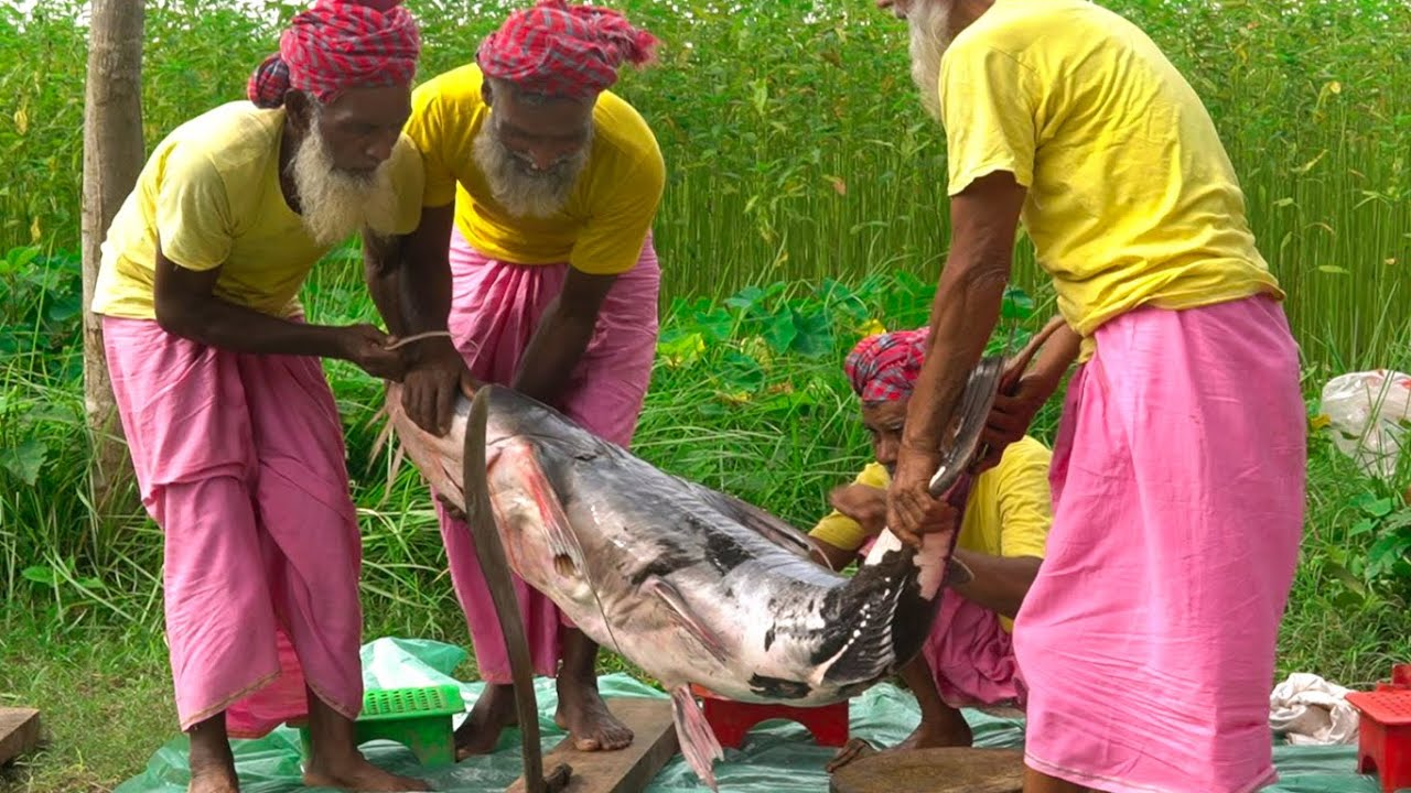 The Giant Devil Catfish Cooking by Grandpa for Special People - Dwarf Goonch Fish Curry Recipe