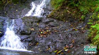"OLD PALI ROAD HIKE and LIKEKE FALLS HD ""Waydes World Hawaii"""