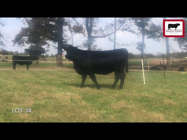 Powell Farms Lot 34