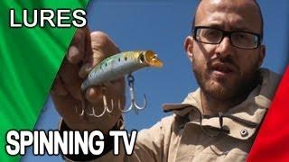Le Esche Artificiali - Seabass Corner - Spinning Tv